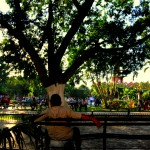 A man relaxes on a bench in Merida's main plaza.