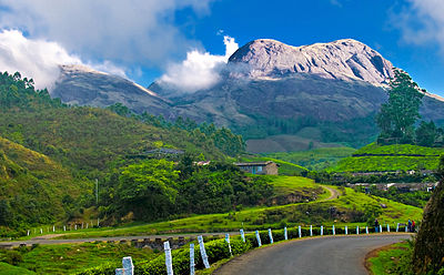 The most popular Hill station of Kerala - Munnar. (via Wikimedia)